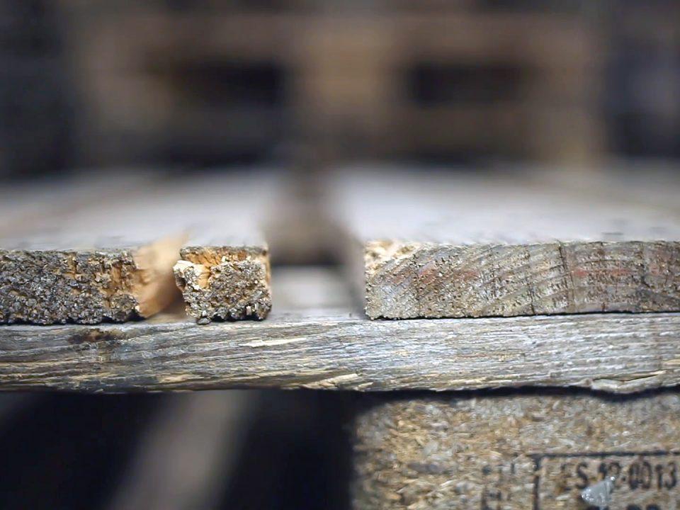 Cómo evitar que el moho se apodere de las tarimas
